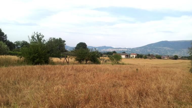 Cannara-Loc S Croce,Terreno edificabile