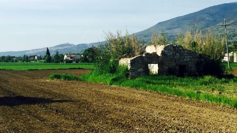 Spello: Terreno Edificabile