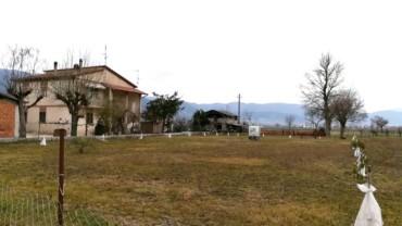 Trevi – Picciche