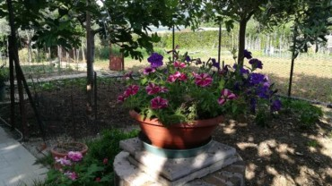Vendita Villa Bifamiliare – 4 Locali