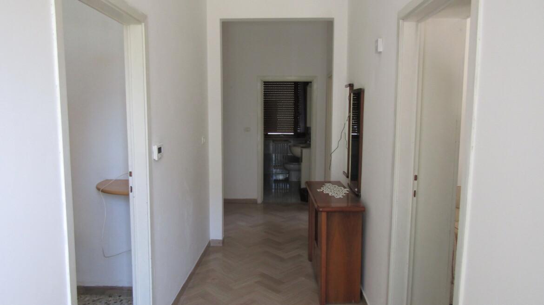 affitto appartamento piano terra con giardino e orto
